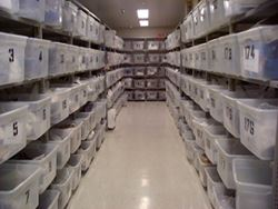 Property Room - Rows of shelves and containers