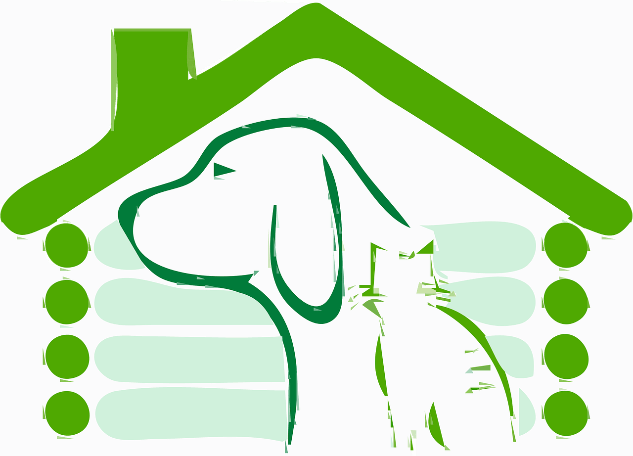Dog and a Cat in a House