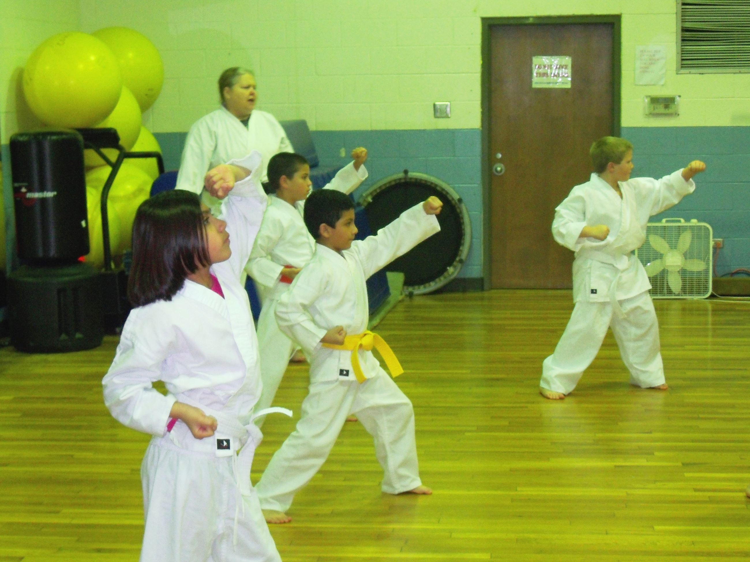 Several youth practicing karate
